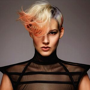 Laura Neithardt, Goldwell, Intercoiffure